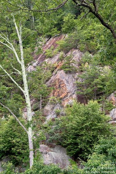150704_VA Shenandoah National Park_0616acs