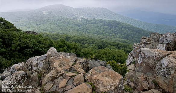 150704_VA Shenandoah National Park_0690acs