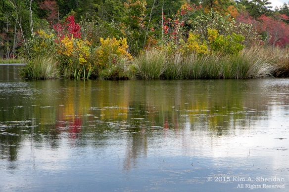151014_NJ Atsion Lake Kayak mc_2964acs