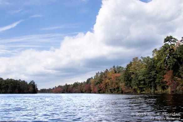 151014_NJ Atsion Lake Kayak_9318acs