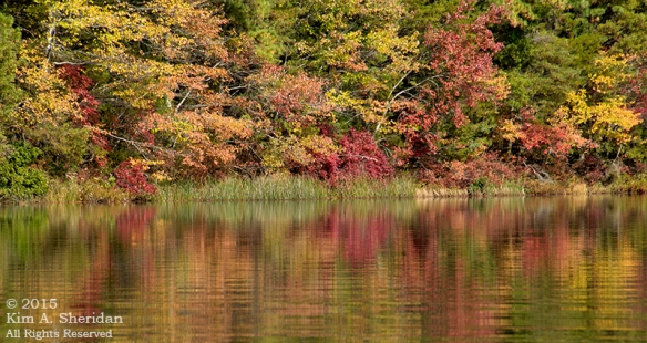151021_NJ Harrisville Pond Kayak_6871acs