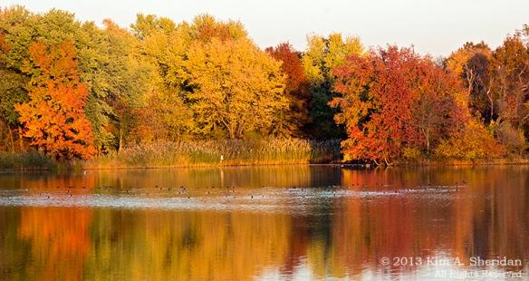 151104_PA HNWR Fall Evening _6922acs