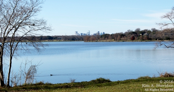 151225_TX White Rock Lake_4448acs