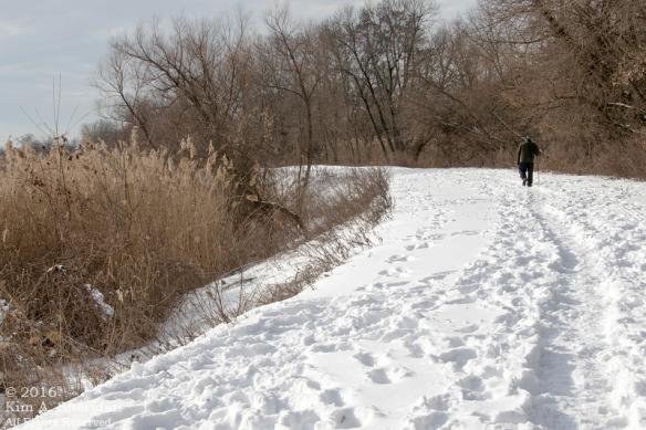 160126_PA HNWR Snow_7733acs