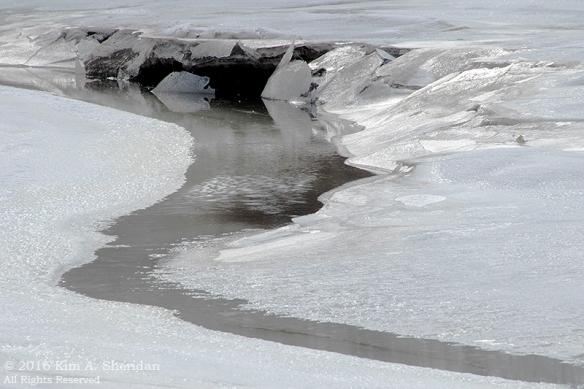 160126_PA HNWR Snow_7915acs