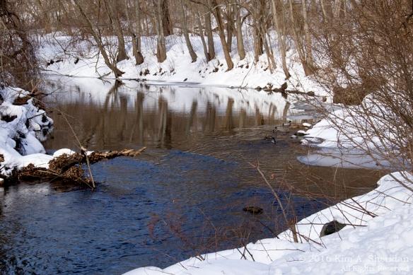 160127_PA Glendale Park Snow_7972aca