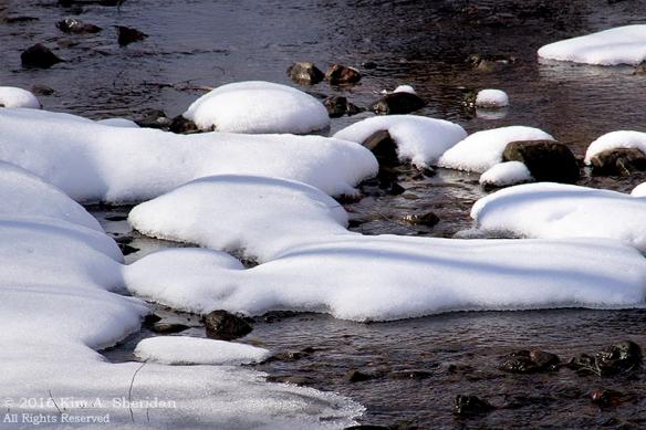 160127_PA Glendale Park Snow_8044acs