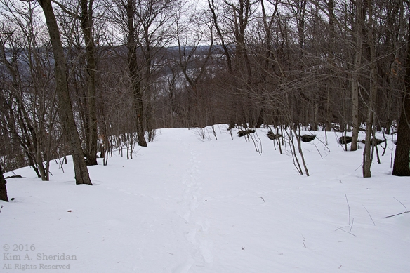 160129_PA Holtwood Pinnacle Snow_8373acs