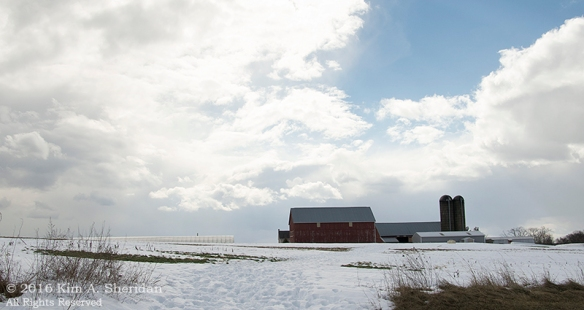 160129_PA Lancaster Farms Snow_8582acs