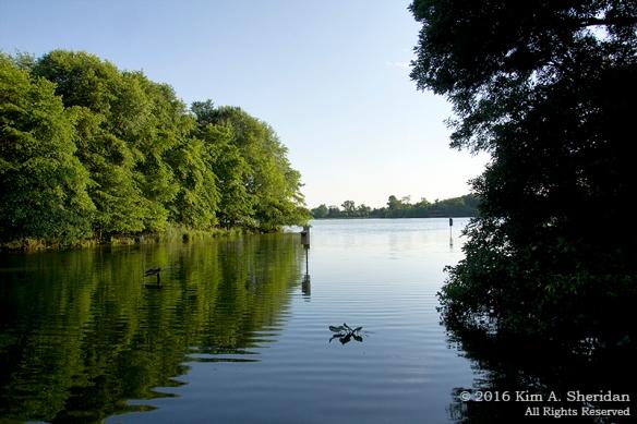 1 HNWR Landscape_7409 acs2