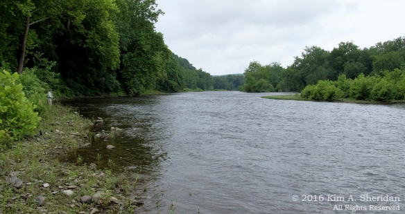 150620_PA Delaware Canal SP_9511acs