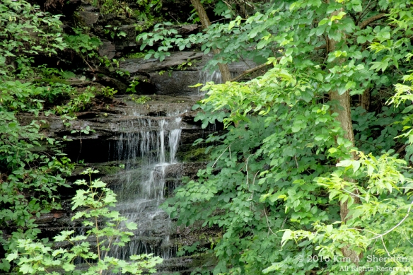 150620_PA Delaware Canal SP_9603acs