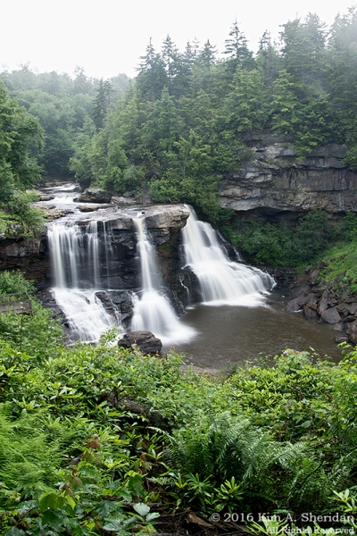 160704_WV Blackwater Falls_2768acs