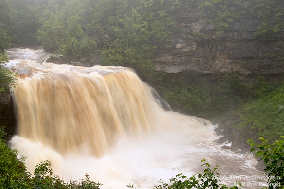 160705_WV Blackwater Falls_3185acs