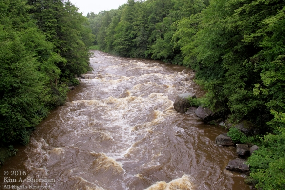 160705_WV Blackwater River_3132acs