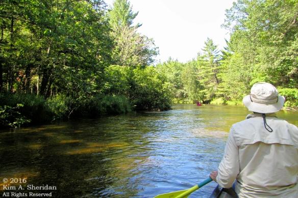 160726_mi-pere-marquette-river-canoe_4094acs