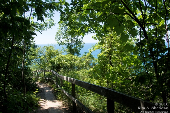 160725_mi-sleeping-bear-dunes-4-empire-bluffs_4791acs