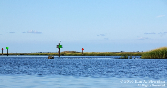 160926_nj-middle-thoroughfare-kayak_9582acs